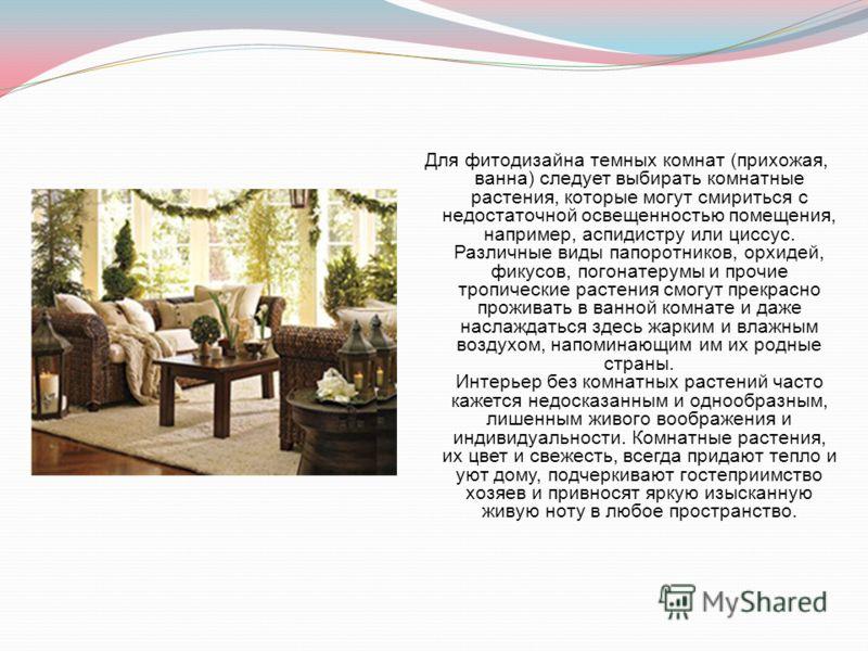 Для фитодизайна темных комнат (прихожая, ванна) следует выбирать комнатные растения, которые могут смириться с недостаточной освещенностью помещения, например, аспидистру или циссус. Различные виды папоротников, орхидей, фикусов, погонатерумы и прочи