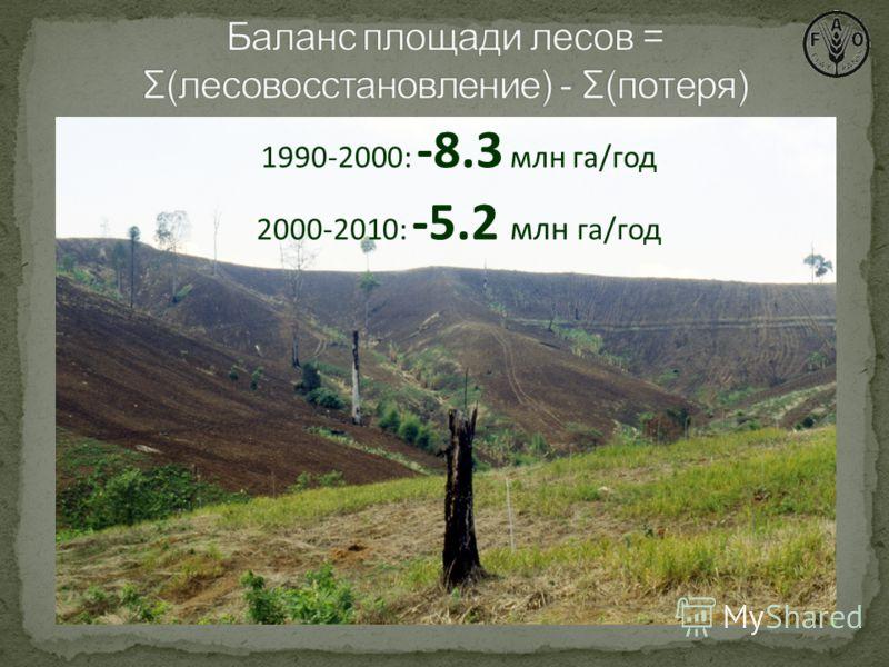 1990-2000: -8.3 млн га/год 2000-2010: -5.2 млн га/год 1990-2000: -8.3 млн га/год 2000-2010: -5.2 млн га/год