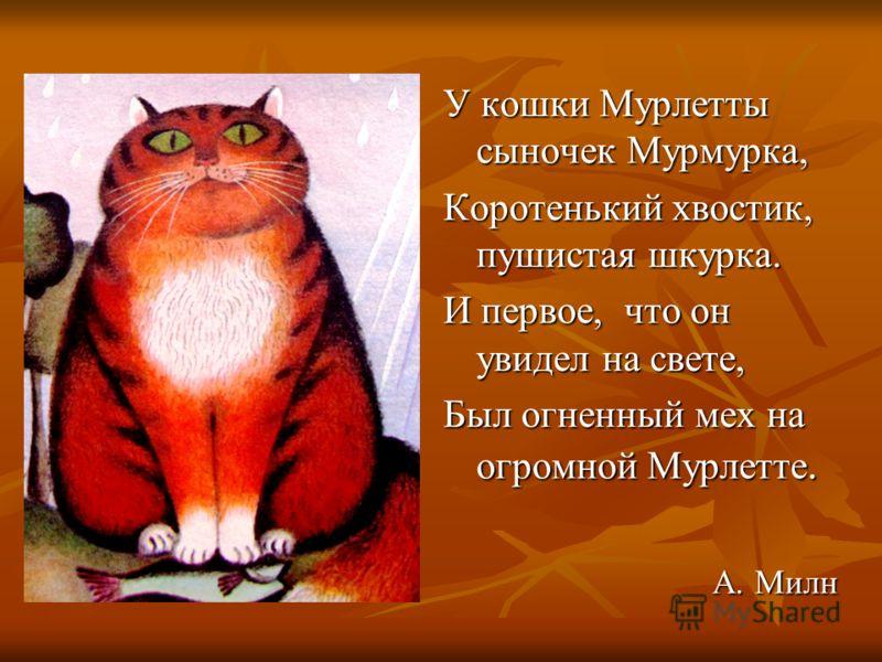 У кошки Мурлетты сыночек Мурмурка, Коротенький хвостик, пушистая шкурка. И первое, что он увидел на свете, Был огненный мех на огромной Мурлетте. А. Милн А. Милн
