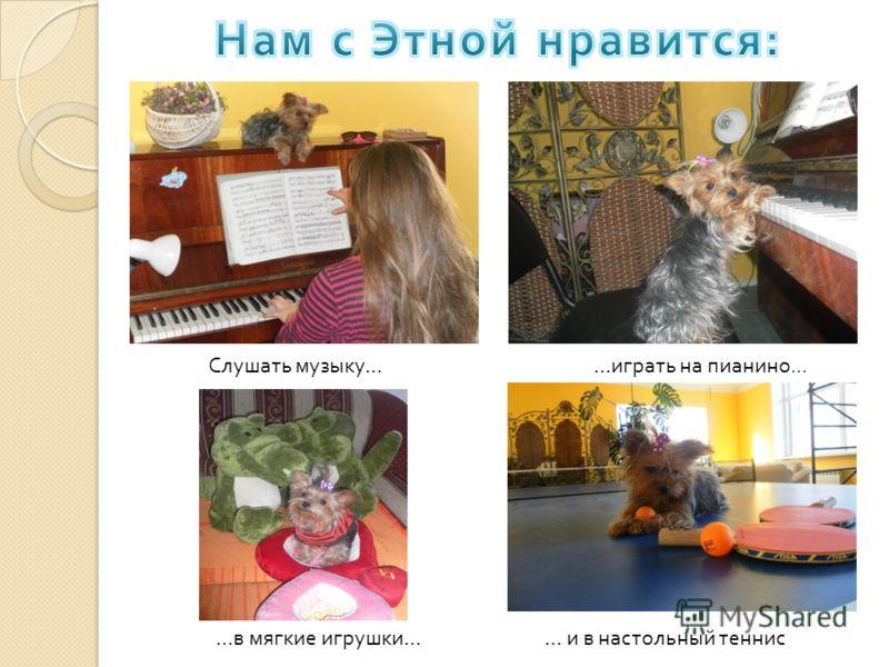 Слушать музыку …… играть на пианино... … и в настольный теннис … в мягкие игрушки …