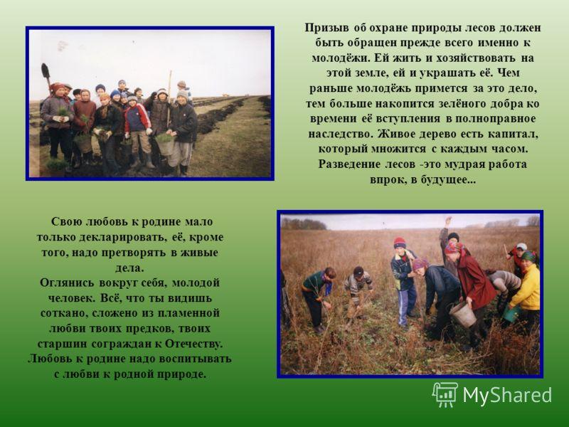 Призыв об охране природы лесов должен быть обращен прежде всего именно к молодёжи. Ей жить и хозяйствовать на этой земле, ей и украшать её. Чем раньше молодёжь примется за это дело, тем больше накопится зелёного добра ко времени её вступления в полн
