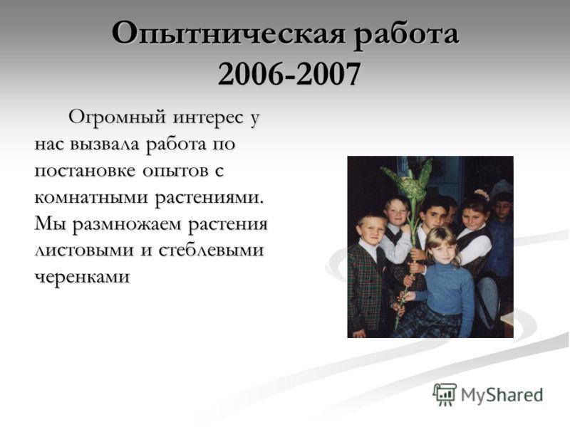 Опытническая работа 2006-2007 Огромный интерес у нас вызвала работа по постановке опытов с комнатными растениями. Мы размножаем растения листовыми и стеблевыми черенками