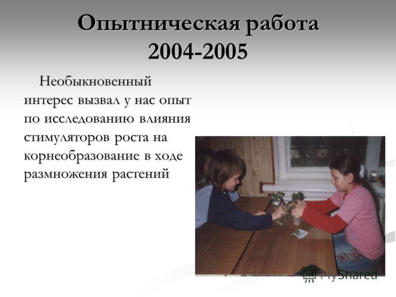 Опытническая работа 2004-2005 Необыкновенный интерес вызвал у нас опыт по исследованию влияния стимуляторов роста на корнеобразование в ходе размножения растений