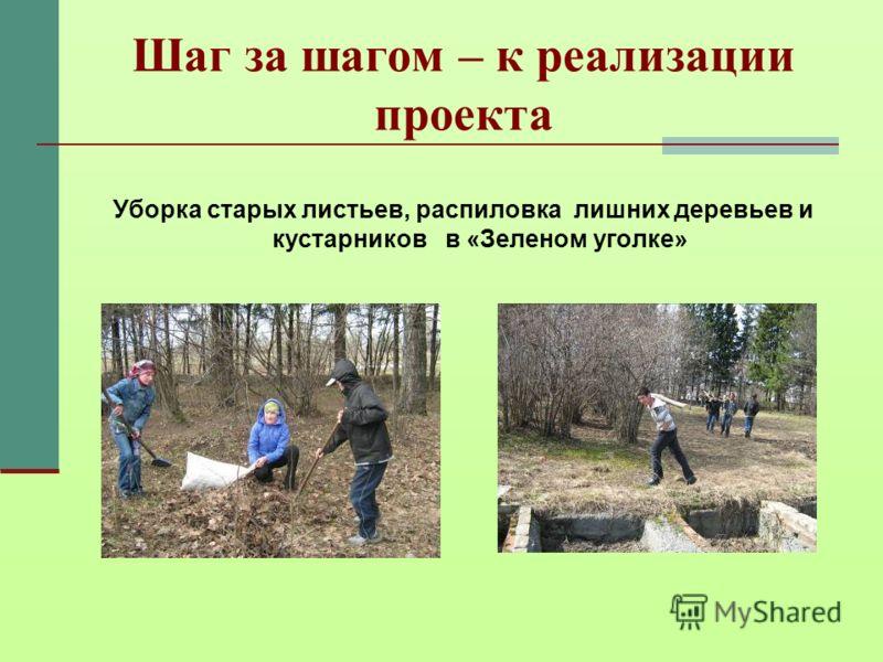 Шаг за шагом – к реализации проекта Уборка старых листьев, распиловка лишних деревьев и кустарников в «Зеленом уголке»