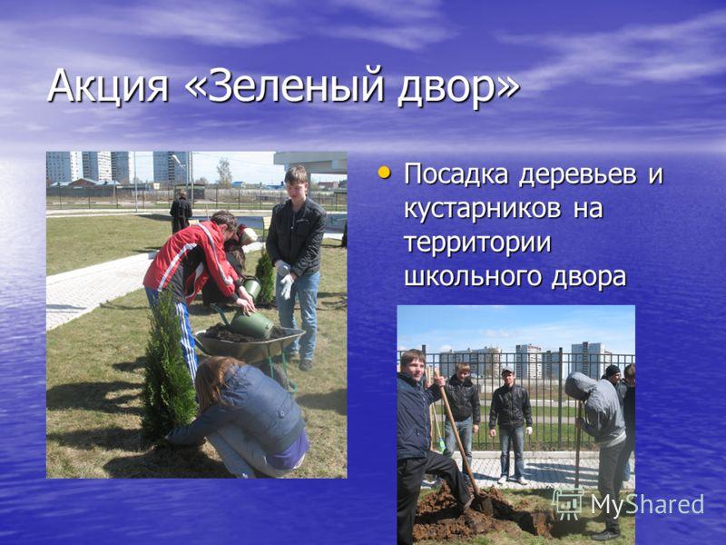 Акция «Зеленый двор» Посадка деревьев и кустарников на территории школьного двора Посадка деревьев и кустарников на территории школьного двора