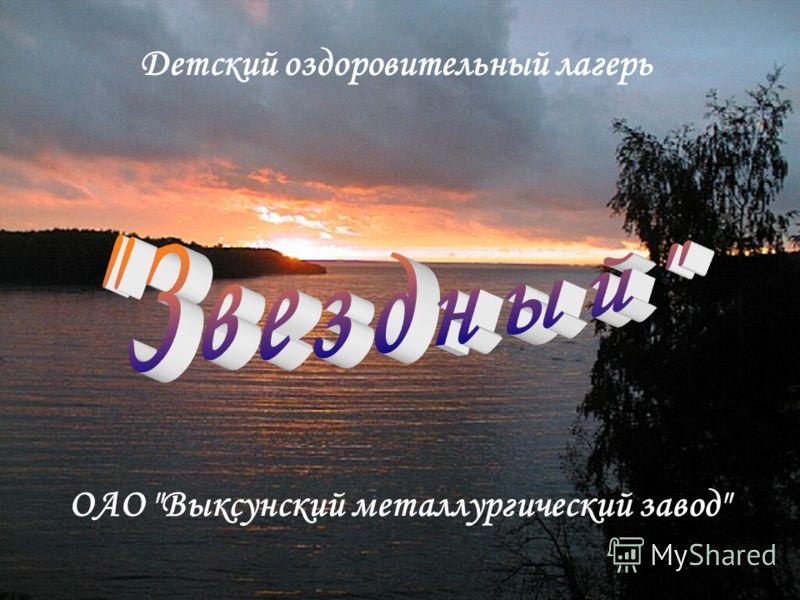 ОАО Выксунский металлургический завод Детский оздоровительный лагерь