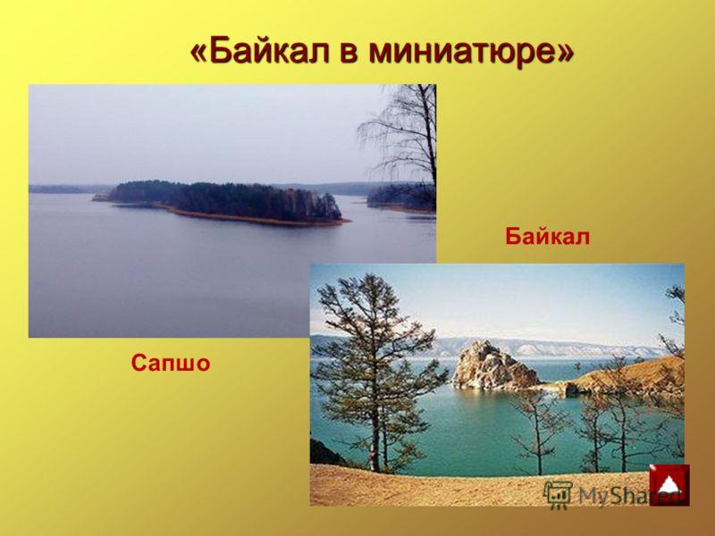 Байкал Сапшо «Байкал в миниатюре»