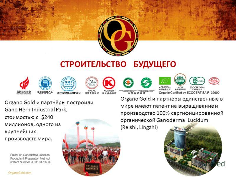 СТРОИТЕЛЬСТВО БУДУЩЕГО Organo Gold и партнёры построили Gano Herb Industrial Park, стоимостью с $240 миллионов, одного из крупнейших производств мира. Organo Gold и партнёры единственные в мире имеют патент на выращивание и производство 100% сертифиц