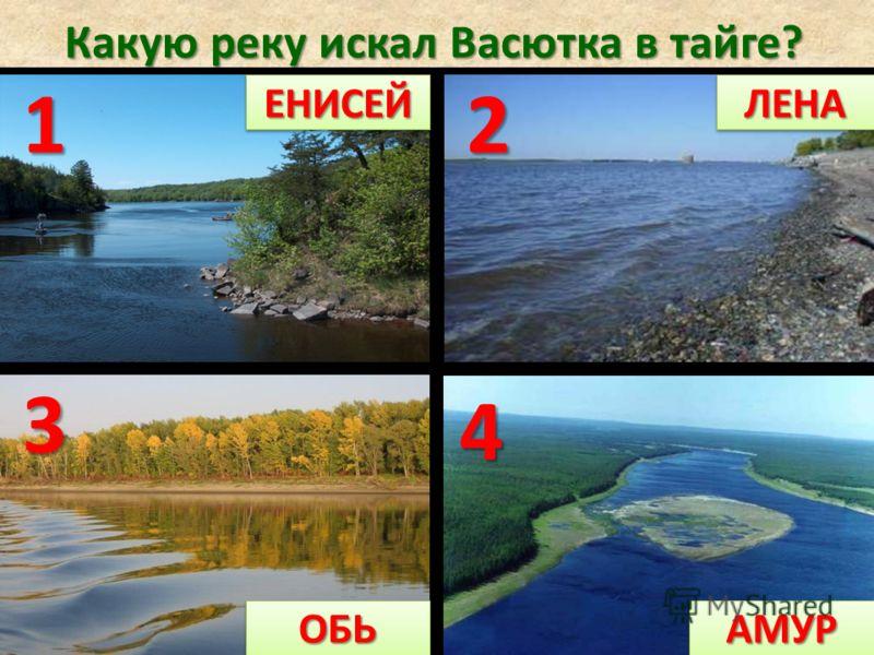 Какую реку искал Васютка в тайге? 12 4 3 ЕНИСЕЙЕНИСЕЙЛЕНАЛЕНА АМУРАМУРОБЬОБЬ 1 ЕНИСЕЙЕНИСЕЙ