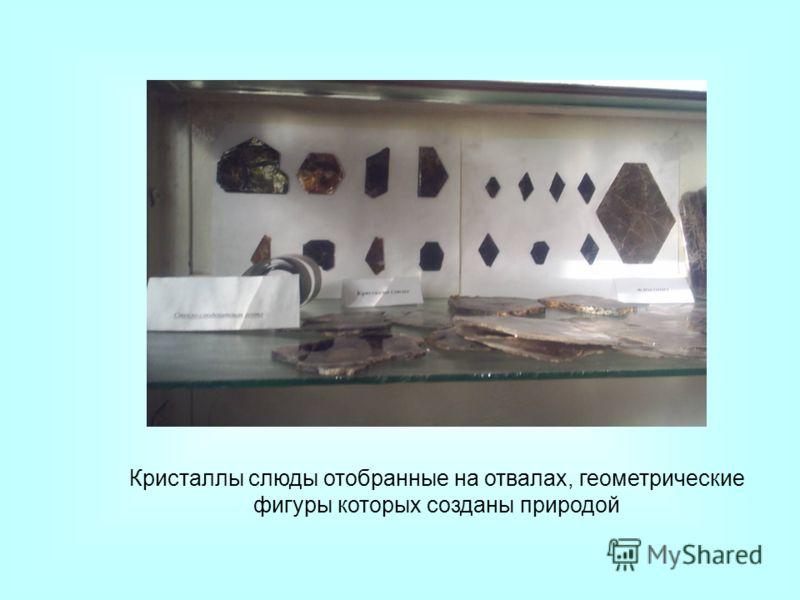 Кристаллы слюды отобранные на отвалах, геометрические фигуры которых созданы природой
