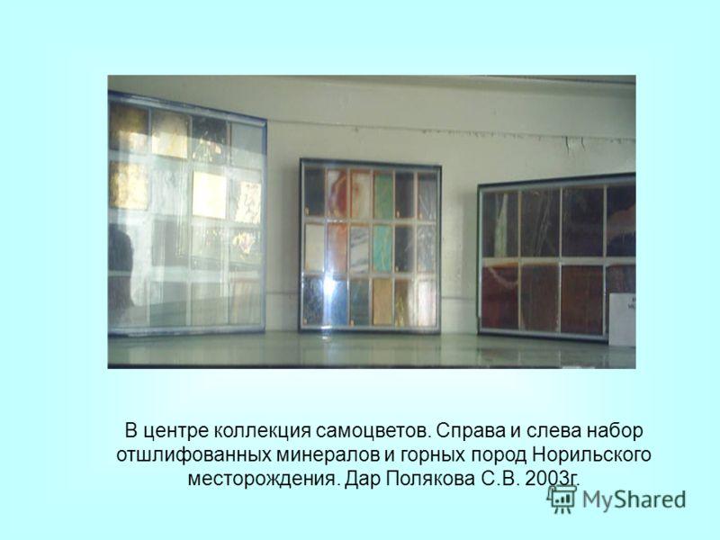 В центре коллекция самоцветов. Справа и слева набор отшлифованных минералов и горных пород Норильского месторождения. Дар Полякова С.В. 2003г.