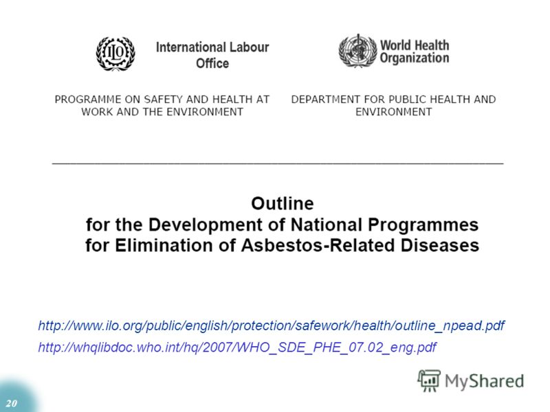 20 http://whqlibdoc.who.int/hq/2007/WHO_SDE_PHE_07.02_eng.pdf http://www.ilo.org/public/english/protection/safework/health/outline_npead.pdf