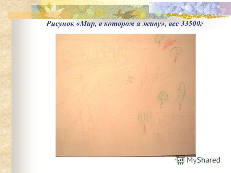Рисунок «Мир, в котором я живу», вес 33500г