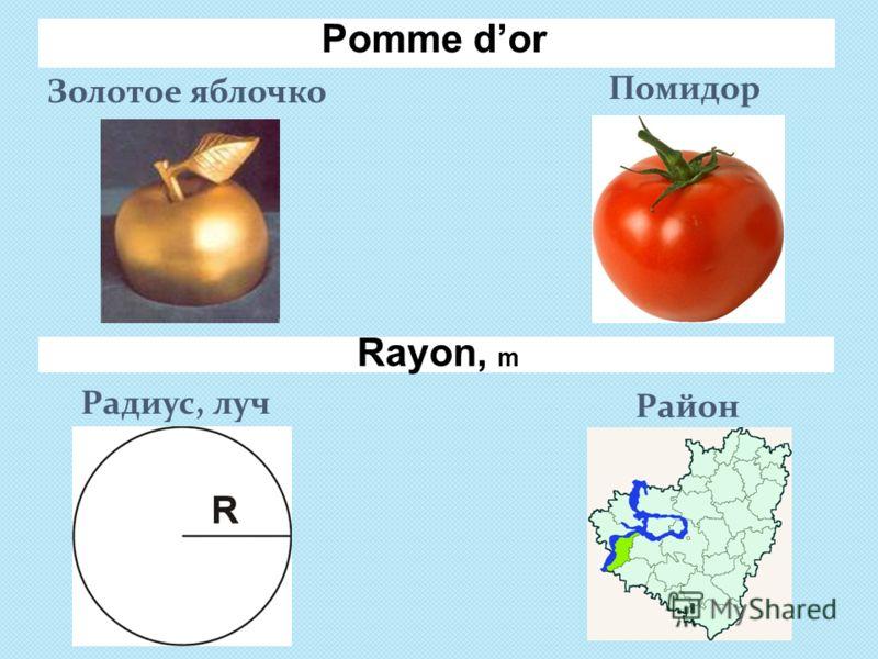 Pomme dor Золотое яблочко Помидор Радиус, луч Район Rayon, m