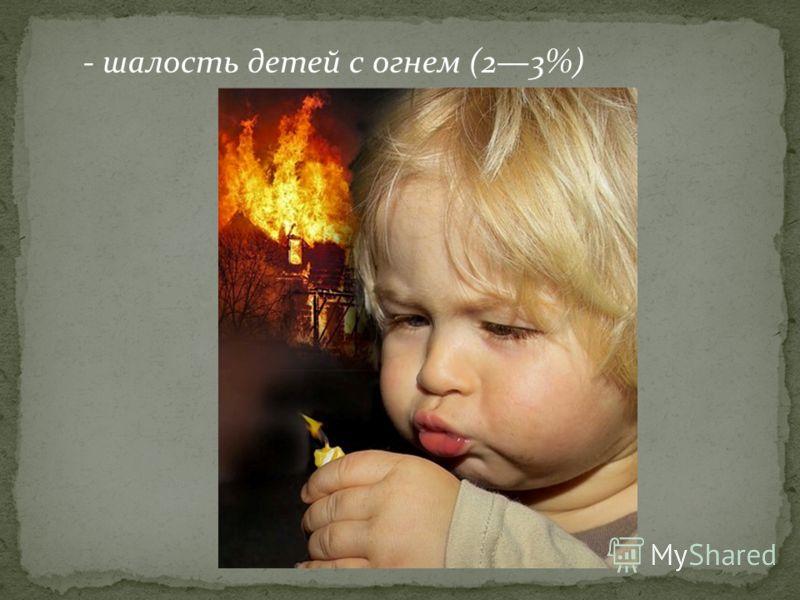 - шалость детей с огнем (23%)