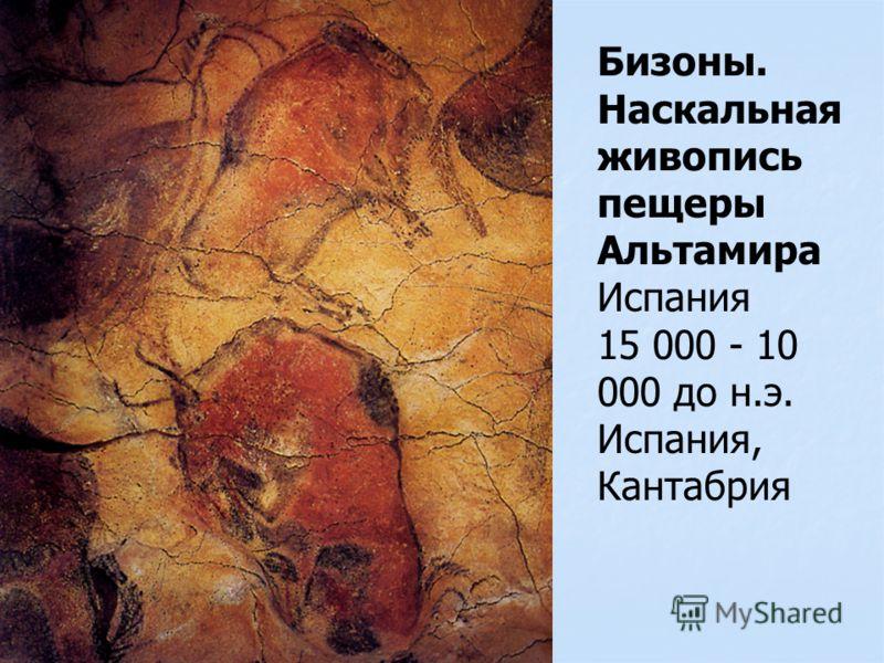 Бизоны. Наскальная живопись пещеры Альтамира Испания 15 000 - 10 000 до н.э. Испания, Кантабрия