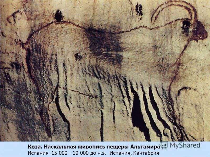 Коза. Наскальная живопись пещеры Альтамира Испания 15 000 - 10 000 до н.э. Испания, Кантабрия