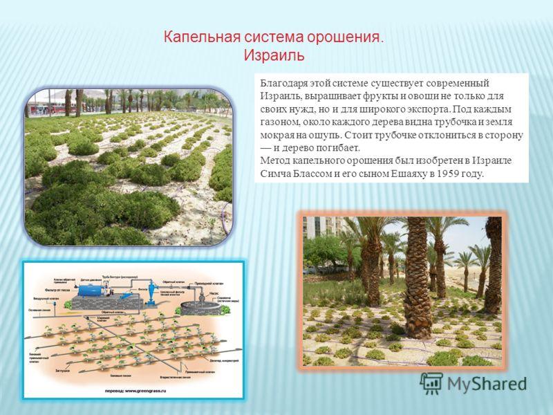 Благодаря этой системе существует современный Израиль, выращивает фрукты и овощи не только для своих нужд, но и для широкого экспорта. Под каждым газоном, около каждого дерева видна трубочка и земля мокрая на ощупь. Стоит трубочке отклониться в сторо