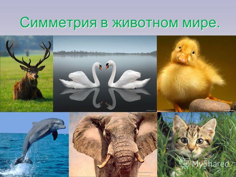Картинки о мире дружбе любви скачать - bb215