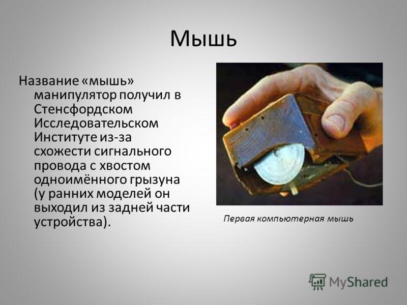 Мышь Название «мышь» манипулятор получил в Стенсфордском Исследовательском Институте из-за схожести сигнального провода с хвостом одноимённого грызуна (у ранних моделей он выходил из задней части устройства). Первая компьютерная мышь