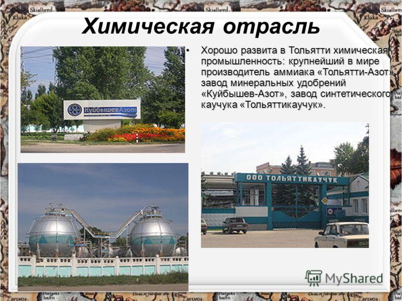 Градообразующим предприятием является ОАО «АВТОВАЗ». Также в городе расположен автомобильный завод компании «GM-АВТОВАЗ» и множество предприятий по производству автокомпонентов и материалов, крупнейшими из которых являются «АвтоВАЗагрегат» и «ВазИнте