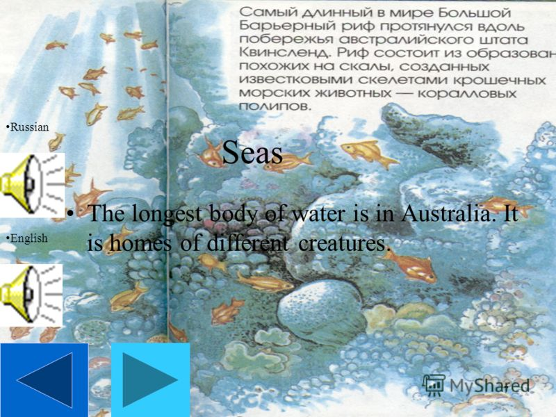 7 Seas The longest body of water is in Australia. It is homes of different creatures. Russian English