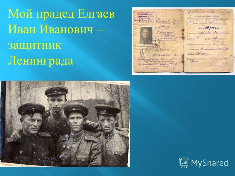 Мой прадед Елгаев Иван Иванович – защитник Ленинграда