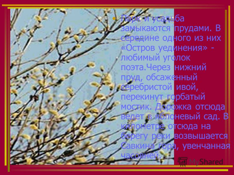 Михайловское. Аллея Анны Керн. В этой аллее встречались Пушкин и Анна Петровна Керн,которая гостила в Тригорском летом 1825 года.