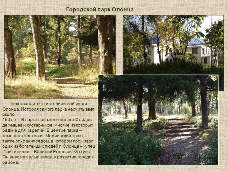 Парк находится в исторической части Олонца. История самого парка насчитывает около 150 лет. В парке посажено более 50 видов деревьев и кустарников, многие из которых редкие для Карелии. В центре парка – каменная мостовая, Мариинский тракт, также сохр