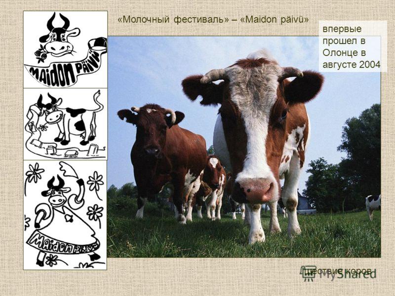 «Молочный фестиваль» – «Maidon päivü» впервые прошел в Олонце в августе 2004 шествие коров