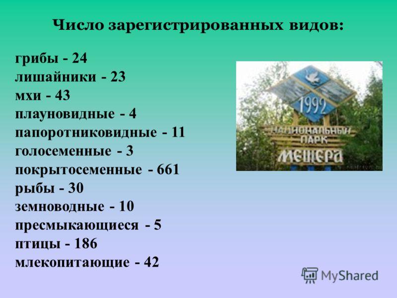 Число зарегистрированных видов: грибы - 24 лишайники - 23 мхи - 43 плауновидные - 4 папоротниковидные - 11 голосеменные - 3 покрытосеменные - 661 рыбы - 30 земноводные - 10 пресмыкающиеся - 5 птицы - 186 млекопитающие - 42