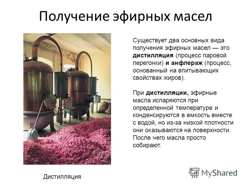 Лаванда Апельсин... лаванды, роз, апельсина и т.д. которые являются сырьем для получения эфирных масел. Получение эфирных масел- это очень дорогое производство. Приблизительно из 3 тонн цветов получается всего лишь 1 кг продукта. Розы