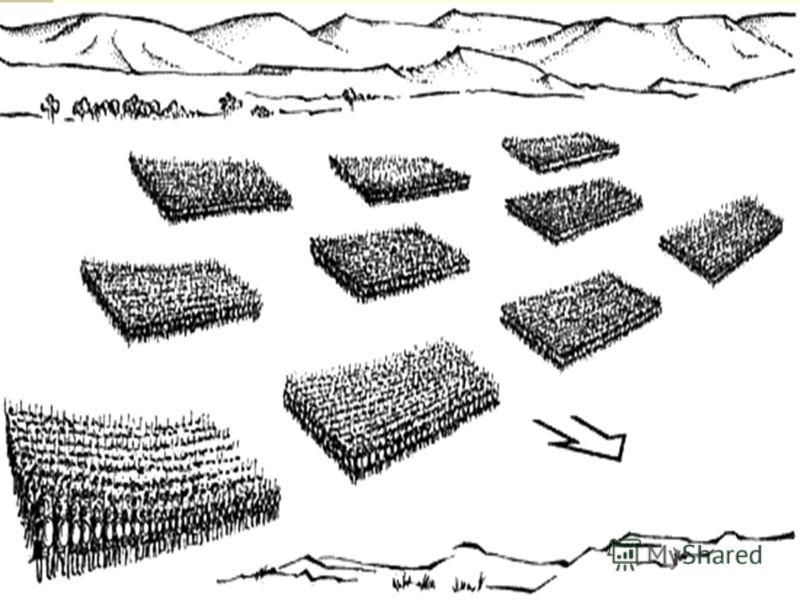 Римская армия.