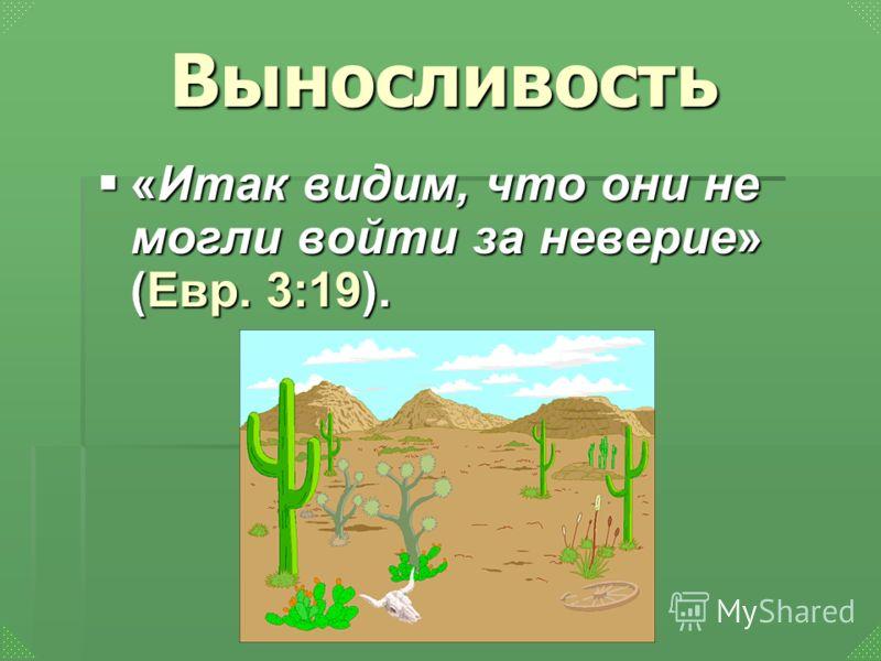 Выносливость «Итак видим, что они не могли войти за неверие» (Евр. 3:19). «Итак видим, что они не могли войти за неверие» (Евр. 3:19).
