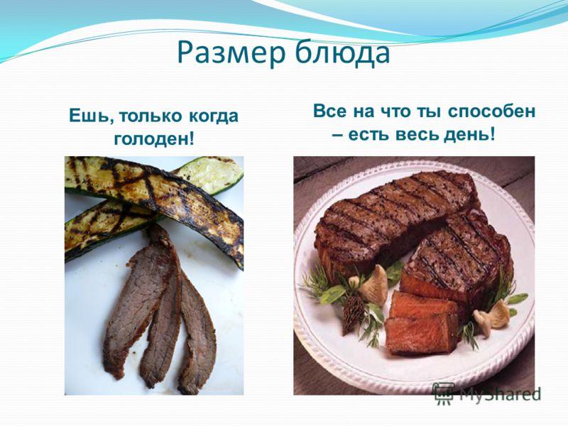Размер блюда Ешь, только когда голоден! Все на что ты способен – есть весь день!