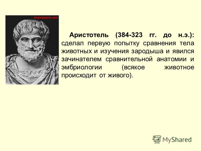 Аристотель (384-323 гг. до н.э.): сделал первую попытку сравнения тела животных и изучения зародыша и явился зачинателем сравнительной анатомии и эмбриологии (всякое животное происходит от живого).