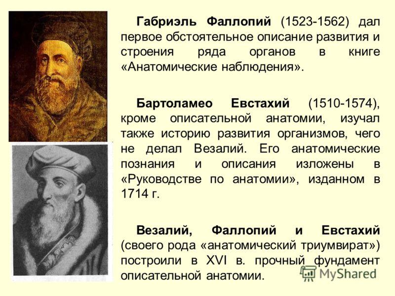 Габриэль Фаллопий (1523-1562) дал первое обстоятельное описание развития и строения ряда органов в книге «Анатомические наблюдения». Бартоламео Евстахий (1510-1574), кроме описательной анатомии, изучал также историю развития организмов, чего не делал