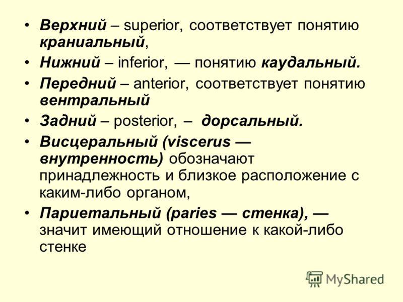 Каудальный