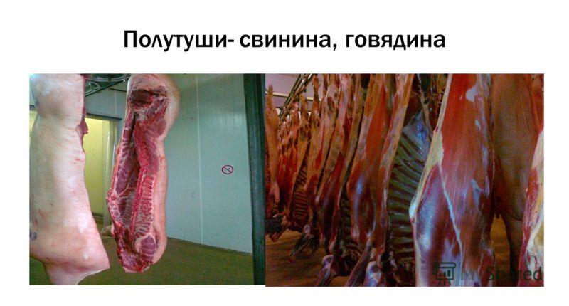 Полутуши- свинина, говядина