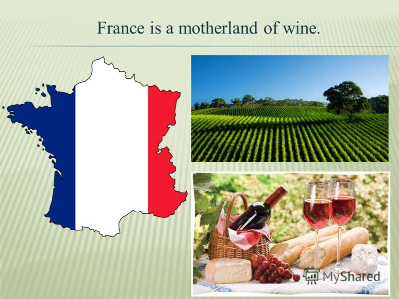 France is a motherland of wine.