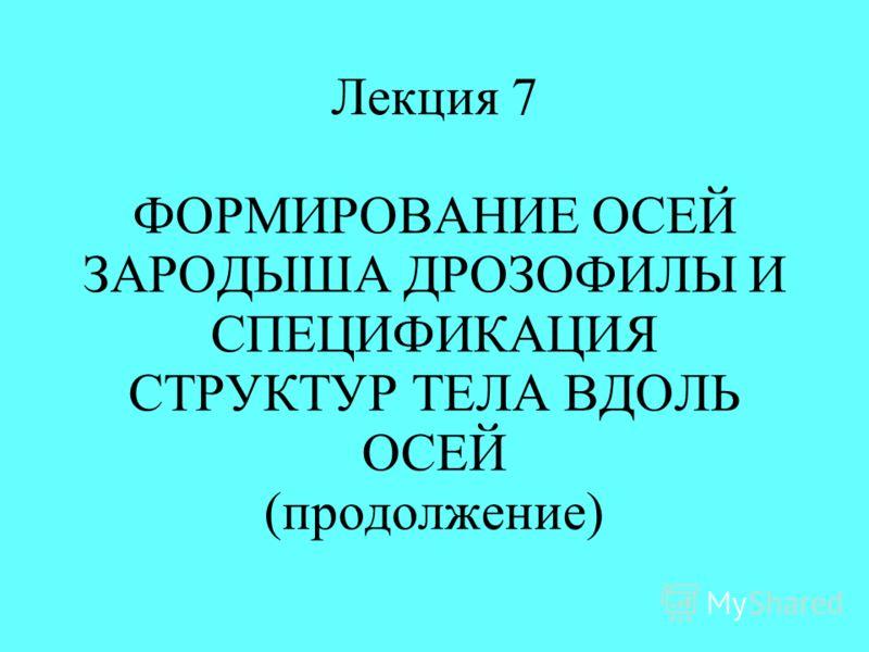 Лекция 7 ФОРМИРОВАНИЕ ОСЕЙ ЗАРОДЫША ДРОЗОФИЛЫ И СПЕЦИФИКАЦИЯ СТРУКТУР ТЕЛА ВДОЛЬ ОСЕЙ (продолжение)