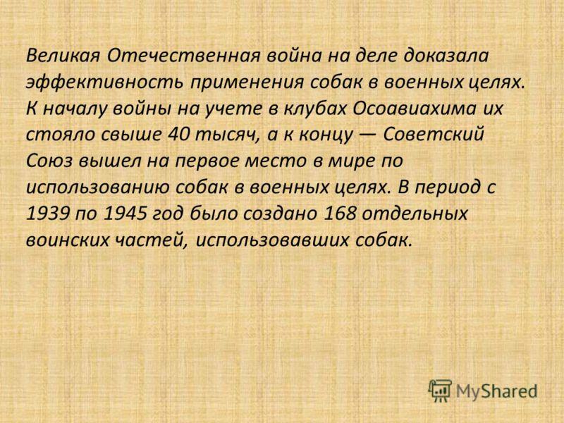 Великая Отечественная война на деле доказала эффективность применения собак в военных целях. К началу войны на учете в клубах Осоавиахима их стояло свыше 40 тысяч, а к концу Советский Союз вышел на первое место в мире по использованию собак в военных