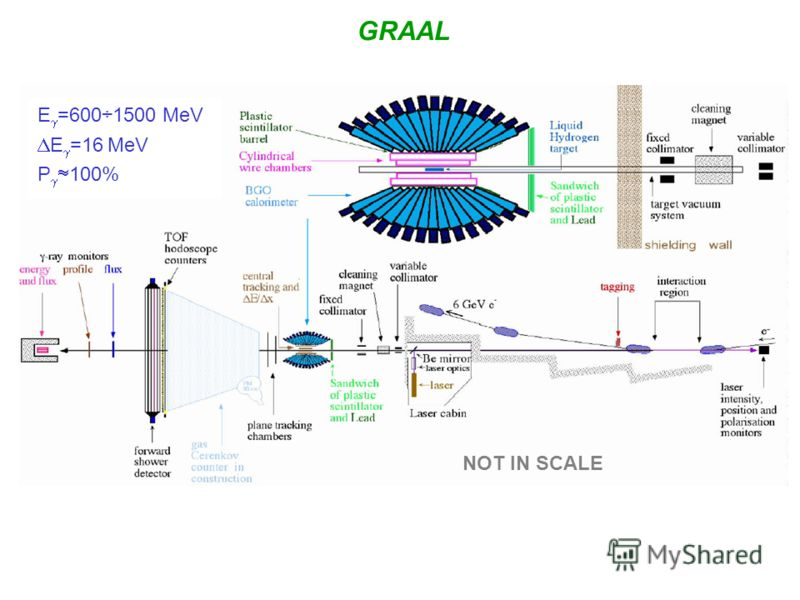 GRAAL E =600÷1500 МeV E =16 МeV P 100% NOT IN SCALE
