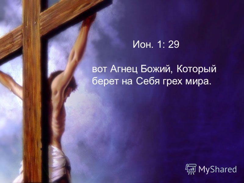 Ион. 1: 29 вот Агнец Божий, Который берет на Себя грех мира.