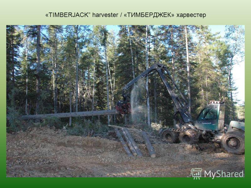 «TIMBERJACK harvester / «ТИМБЕРДЖЕК» харвестер