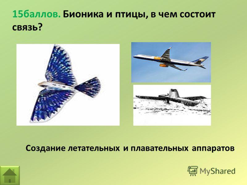 15баллов. Бионика и птицы, в чем состоит связь? Создание летательных и плавательных аппаратов