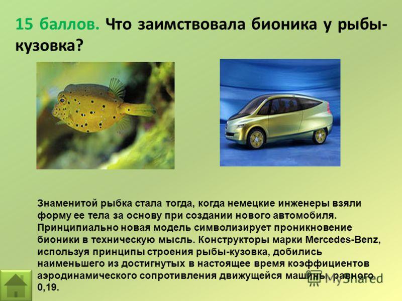 15 баллов. Что заимствовала бионика у рыбы- кузовка? Знаменитой рыбка стала тогда, когда немецкие инженеры взяли форму ее тела за основу при создании нового автомобиля. Принципиально новая модель символизирует проникновение бионики в техническую мысл