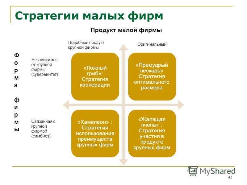 Стратегии малых фирм 43 Форма фирмыФорма фирмы Продукт малой фирмы Независимая от крупной фирмы (суверенитет) Связанная с крупной фирмой (симбиоз) Оригинальный Подобный продукт крупной фирмы