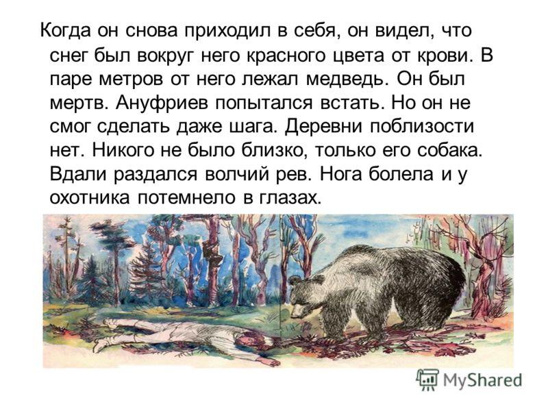 Когда он снова приходил в себя, он видел, что снег был вокруг него красного цвета от крови. В паре метров от него лежал медведь. Он был мертв. Ануфриев попытался встать. Но он не смог сделать даже шага. Деревни поблизости нет. Никого не было близко,