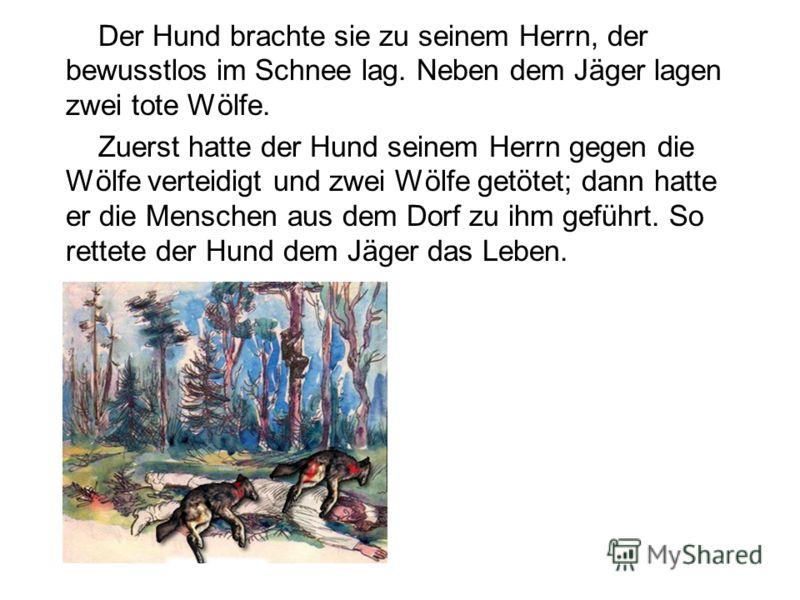 Der Hund brachte sie zu seinem Herrn, der bewusstlos im Schnee lag. Neben dem Jäger lagen zwei tote Wölfe. Zuerst hatte der Hund seinem Herrn gegen die Wölfe verteidigt und zwei Wölfe getötet; dann hatte er die Menschen aus dem Dorf zu ihm geführt. S